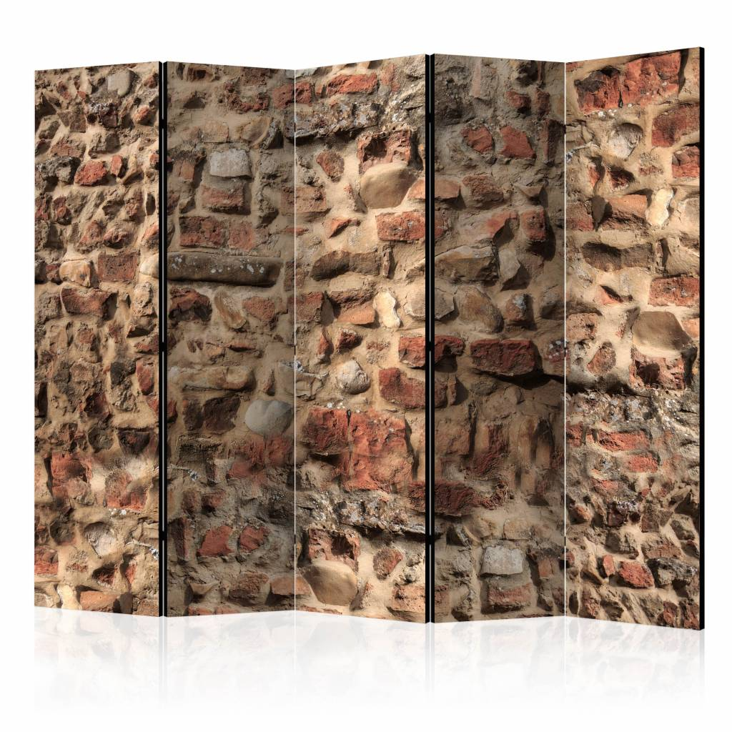 Vouwscherm - Oude muur 225x172cm