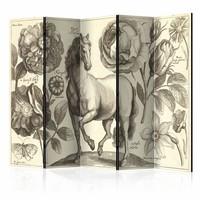 Vouwscherm - Paard 225x172cm