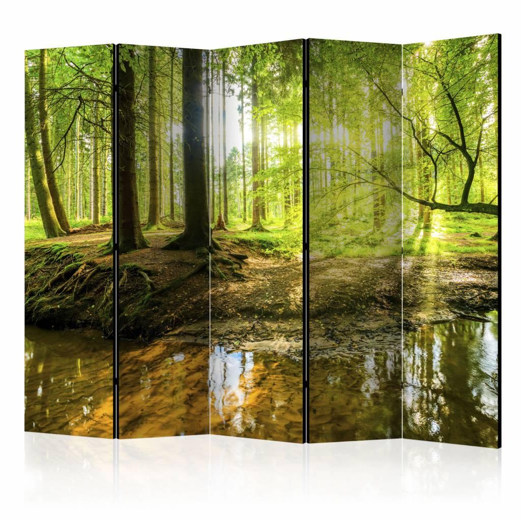 Vouwscherm -Het bos 225x172cm , gemonteerd geleverd, dubbelzijdig geprint(kamerscherm)