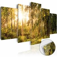 Afbeelding op acrylglas - Magische bos, Groen/Geel, 2 Maten, 5luik
