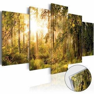 Afbeelding op acrylglas - Magische bos, Groen/Geel,  5luik