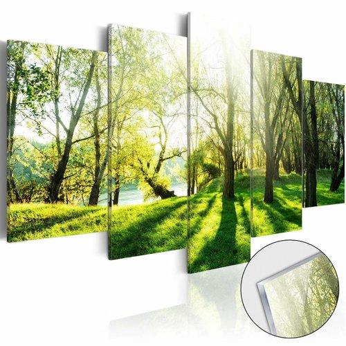 Afbeelding op acrylglas - Het bos, Groen, 2 Maten, 5luik