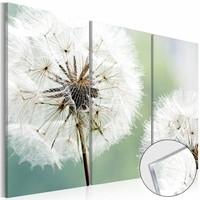 Afbeelding op acrylglas - Fluffy Paardebloem, Groen/Wit,  3luik