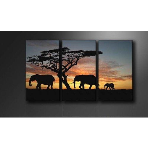 Schilderij - Olifant Afrika, Zwart/Oranje, 160X90cm , 3luik