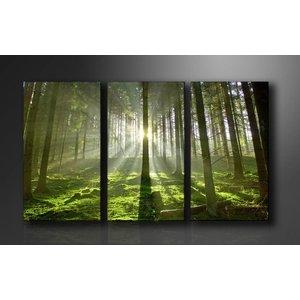 Schilderij - Bos, Groen, 160X90cm, 3luik