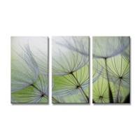 Schilderij - Paardenbloem, Groen, 160X90cm, 3luik