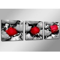 Schilderij - Roos, Rood/Grijs, 150X50cm, 3luik