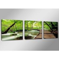 Schilderij - Natuur, Groen, 150X50, 3luik