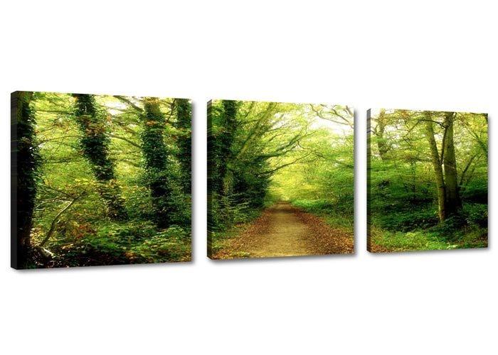 Schilderij - Natuur Pad Bomen, Groen, 150X50cm, 3luik