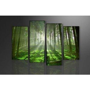 Schilderij - Bos, Groen, 130X80cm, 4luik