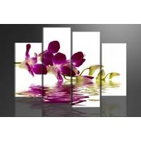 Schilderij - Orchidee, Paars/Wit, 130X80cm, 4luik