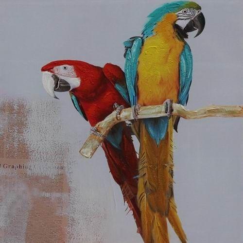 Schilderij -Handgeschilderd - Papegaaien op stok - multikleur - 100x100cm