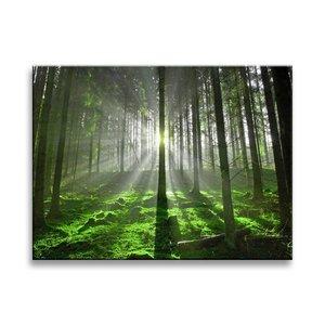 Schilderij - Bos, Groen, 40X30cm, 1luik