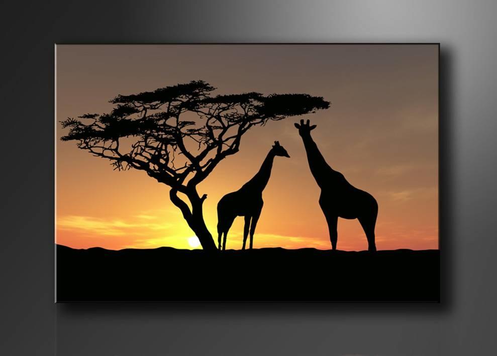 Schilderij - Afrika Giraffe, Oranje/Zwart, 80X60cm, 1luik