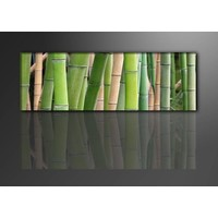 Schilderij - Bamboe, Groen, 120X40cm, 1luik