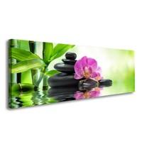 Schilderij - Spa Orchidee, Groen/Roze, 120X40cm, 1luik