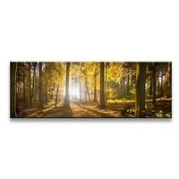 Schilderij - Bos, Bruin/Geel, 120X40cm, 1luik