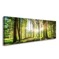Schilderij - Bos, Groen, 120X40cm, 1luik