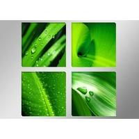 Schilderij - Bladeren, Groen, 4delen van 30X30cm