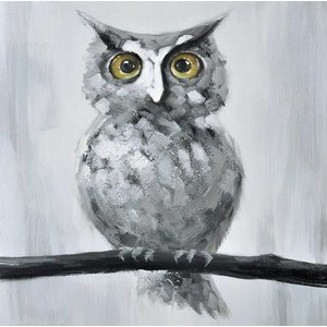 Schilderij - Handgeschilderd - Uil 80x80cm