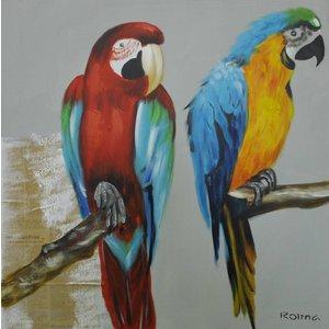 Schilderij - Handgeschilderd - Papegaaien 80x80cm