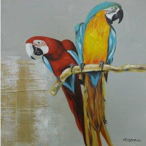 Schilderij - Handgeschilderd - Papegaaien 2, 80x80cm