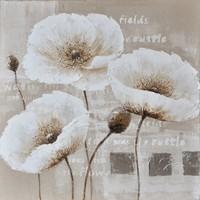 Schilderij -Handgeschilderd - Klaprozen - wit beige - 100x100cm