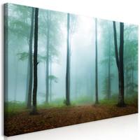 Schilderij - Mistige ochtend in het bos