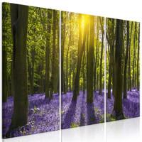 Schilderij - Paarse hyacinten in het bos, 3 luik