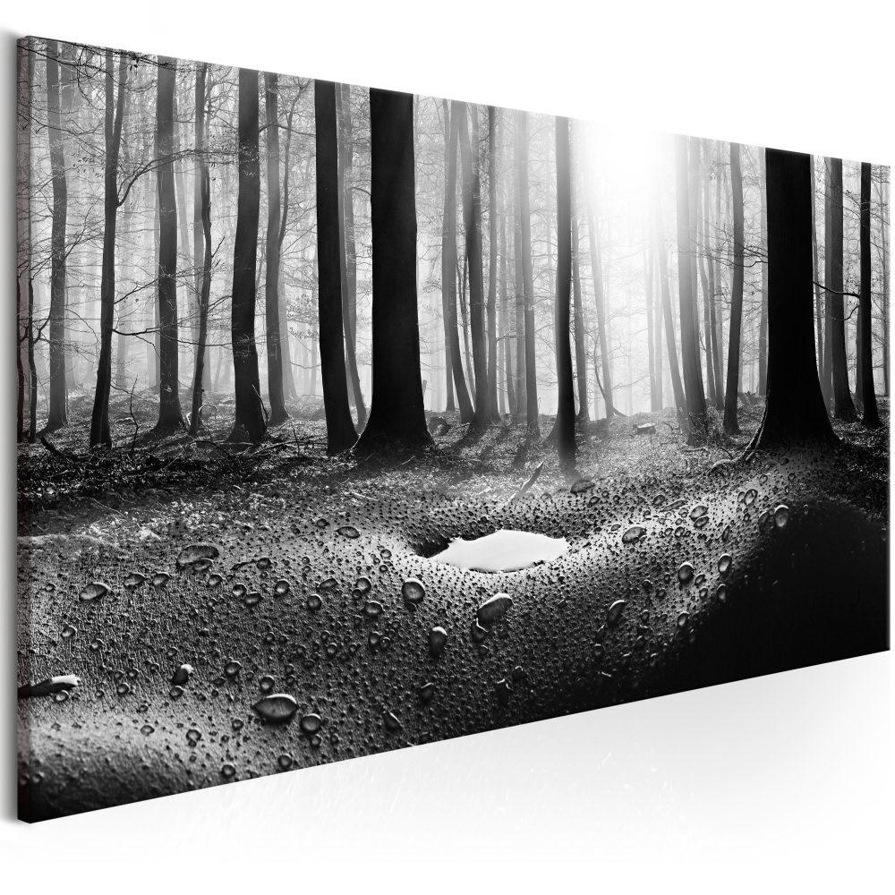 Schilderij - Bos na de regen