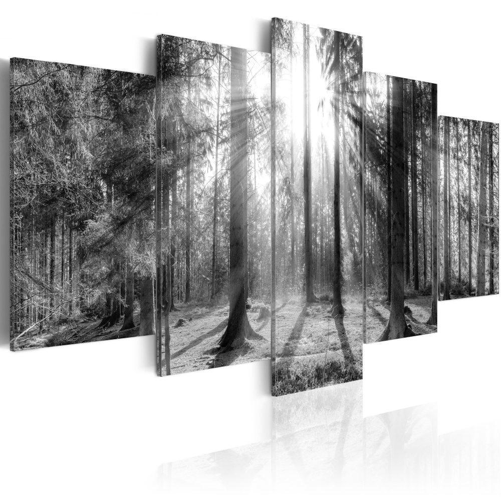 Schilderij - Herinneringen aan het Bos, 5luik, Zwart-Wit