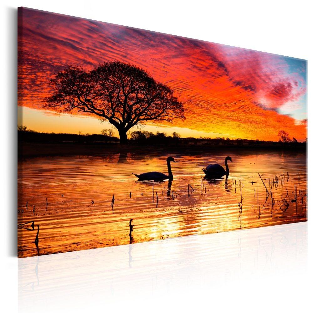 Schilderij - Zwanenmeer