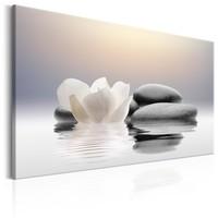Schilderij -  Zen Waterlelie en Stenen