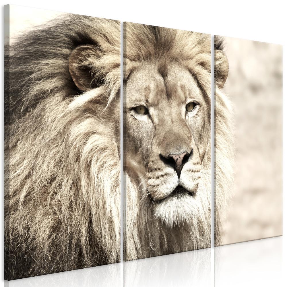 Schilderij -De Koning van de Dieren , Leeuw , 3 luik