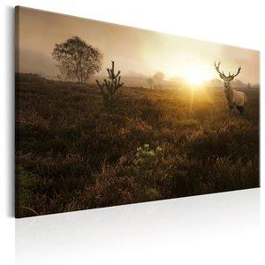 Schilderij - Hert op een mistig veld