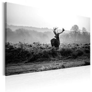 Schilderij - Hert in het wild in Zwart en Wit