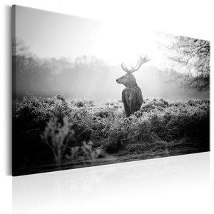 Schilderij - Hert in het veld in Zwart en Wit