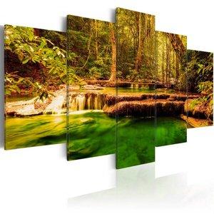 Schilderij - Schoonheid van de Natuur , Waterval , 5 luik