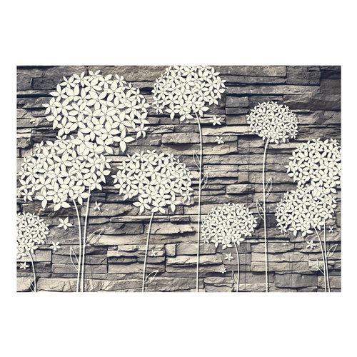 Fotobehang -Bloemen op Steen
