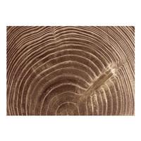 Fotobehang -Jaren van een boom