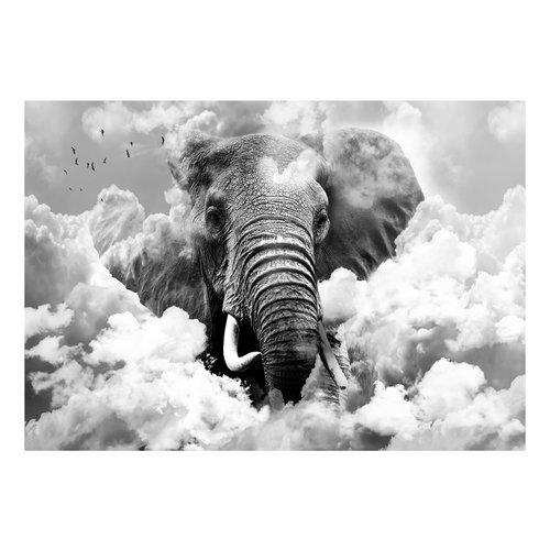 Fotobehang - Olifant in de wolken, ( zwart-wit ), premium print vliesbehang
