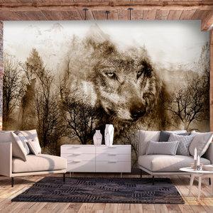 Fotobehang - Wolf in de bergen  III, premium print vliesbehang