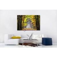 Karo-art Schilderij - Ochtendwandeling in het bos