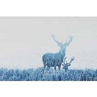 Karo-art Schilderij - Herten opgenomen door het bos , Blauw wit , 3 maten , Premium print