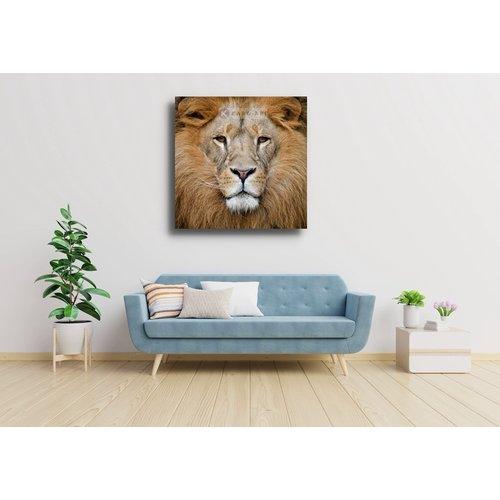 Karo-art Schilderij - Portret van de Leeuw , Beige bruin , 3 maten ,  Wanddecoratie