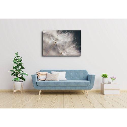 Karo-art Schilderij - Paardenbloem in de wind , Zwart wit , 3 maten , Wanddecoratie