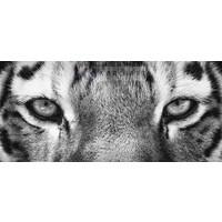 Karo-art Schilderij - Ogen van de tijger in zwart wit, eye of the tiger, premium print , 2 maten