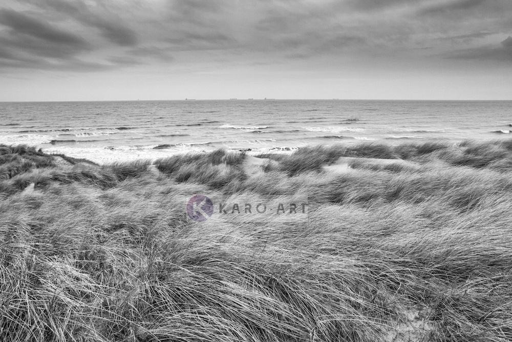 Schilderij - De Noordzee en duinen in zwart en wit, premium print, 3 maten , Wanddecoratie