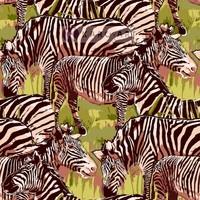 Karo-art Schilderij - Zebra op de savanne, prachtige tekening op canvas geprint, Multikleur , 3 maten, Premium print