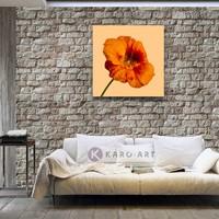 Karo-art Schilderij - Oranje klaproos op gele achtergrond , 3 maten , Wanddecoratie, Premium print